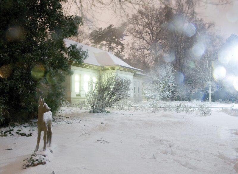 Bilder in unseren Köpfen: Das Haus hell erleuchtet, eine prächtige Tanne und viel Schnee. Foto: Jan-Christoph Hartung
