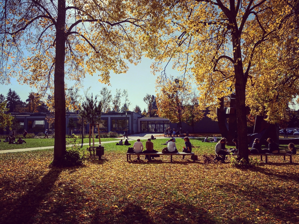 Goldener Oktober in der Nähe des Henry-Ford-Baus der FU. (Foto: Marius Mestermann)