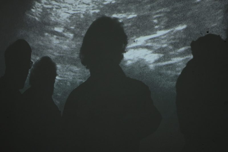 Die Besucher*innen werden Schatten im Mutterleib. Foto: Jana Schneider